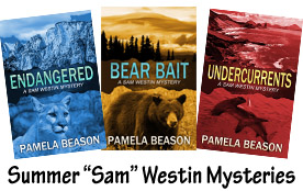 NEW Sam Westin Series copy