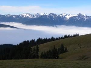 Valleys in Mist in Olympic Natl Park